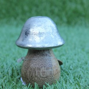 magical-silver-toadstool