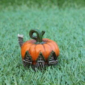 mini-pumpkin-fairy-housejpg