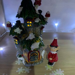 elf and house2