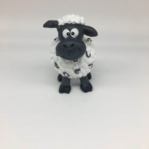 septimus sheep