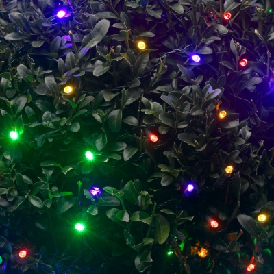 10163099-smart-solar-50-multi-coloured-led-string-lights